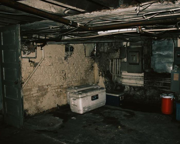 Источник фото:Unsplash.com