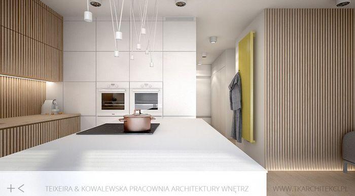 Кухня. Источник фото: TK Architekci
