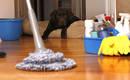 5 ошибок, которые вы делаете во время уборки