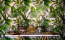 Озеленение интерьера: растения, которые вообще не нужно поливать