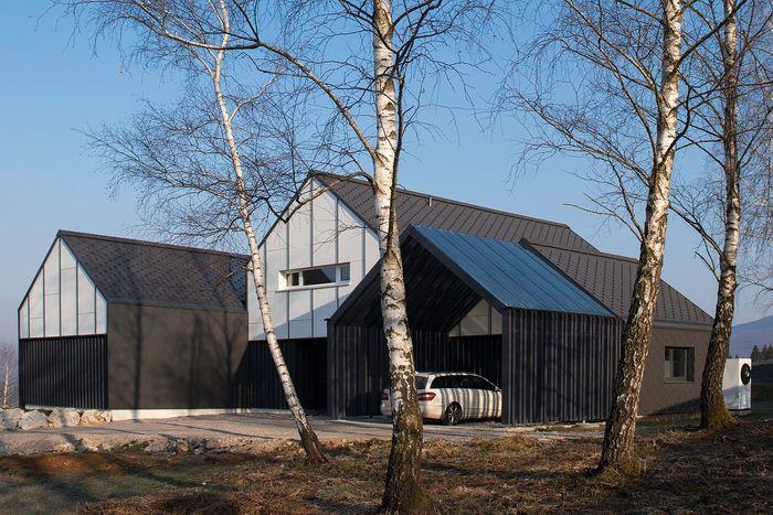 Словенский дом. Архитектура: студия SoNo Architects. Фото: Ziga Lovsin