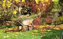 4 важные действия по подготовке сада к зиме