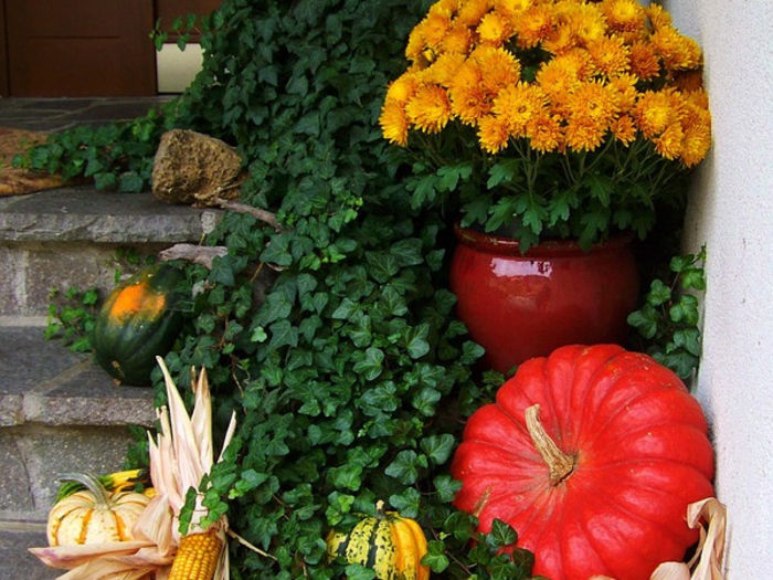 Источник фото: photos.com