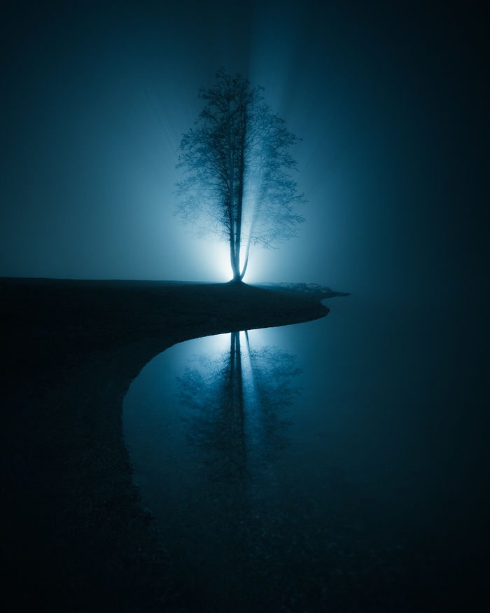 Источник фото: https://www.thisiscolossal.com/.Фото: © Mikko Lagerstedt