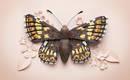 Ослепительные бумажные скульптуры птиц, пчел и бабочек
