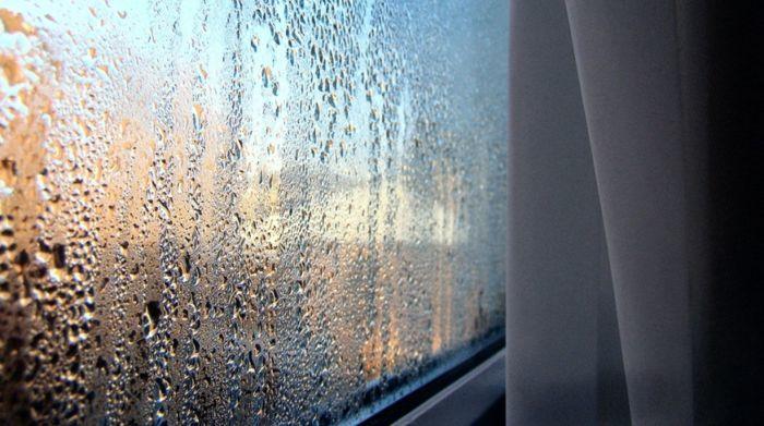 Источник фото: iStock.com
