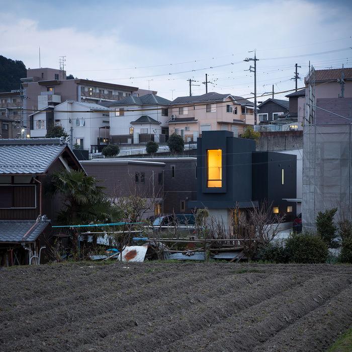 Фото: Norihito Yamauchi