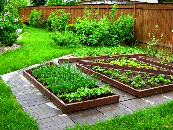 Грядки в саду