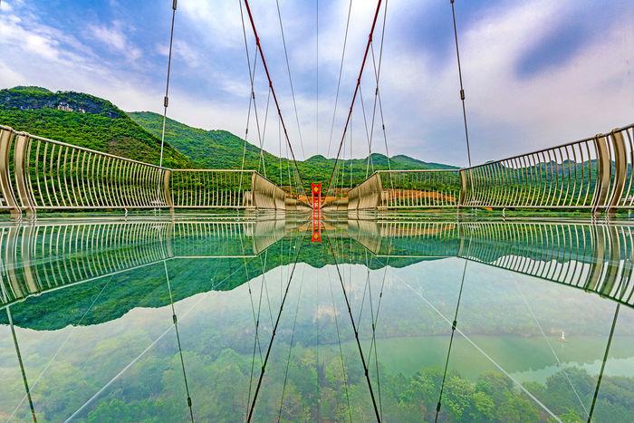 Фото: Zhejiang University