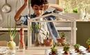 Сад на балконе - реальность для каждого