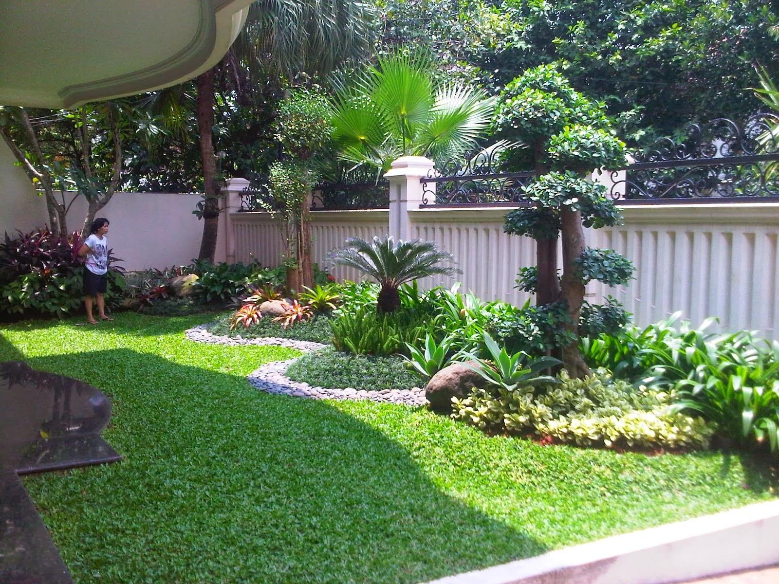 taman_rumah_minimalis_dengan_tanaman_besar