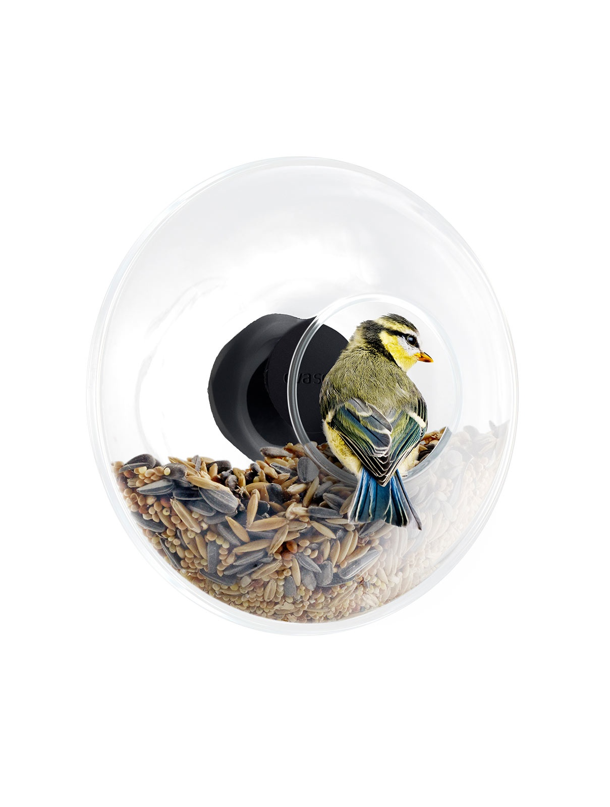 window-bird-feeder-eva-solo-1