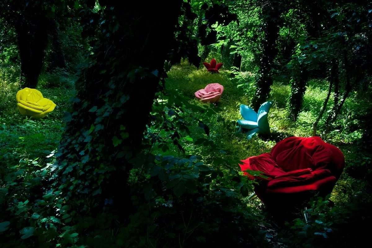 _edra_rose_chair