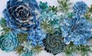 Фарфоровые цветы Оуэна Манна