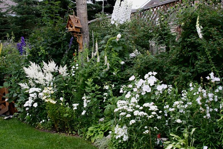 white-garden-1