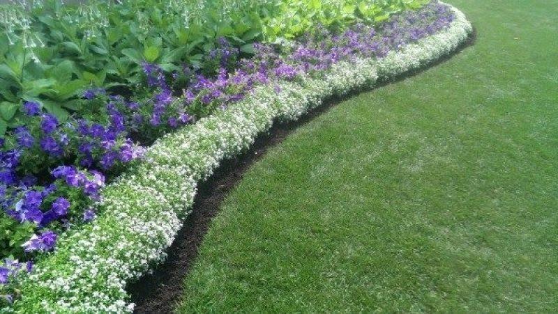 ideas-for-garden-borders-and-edging-inside-small-garden-border-ideas-800x451