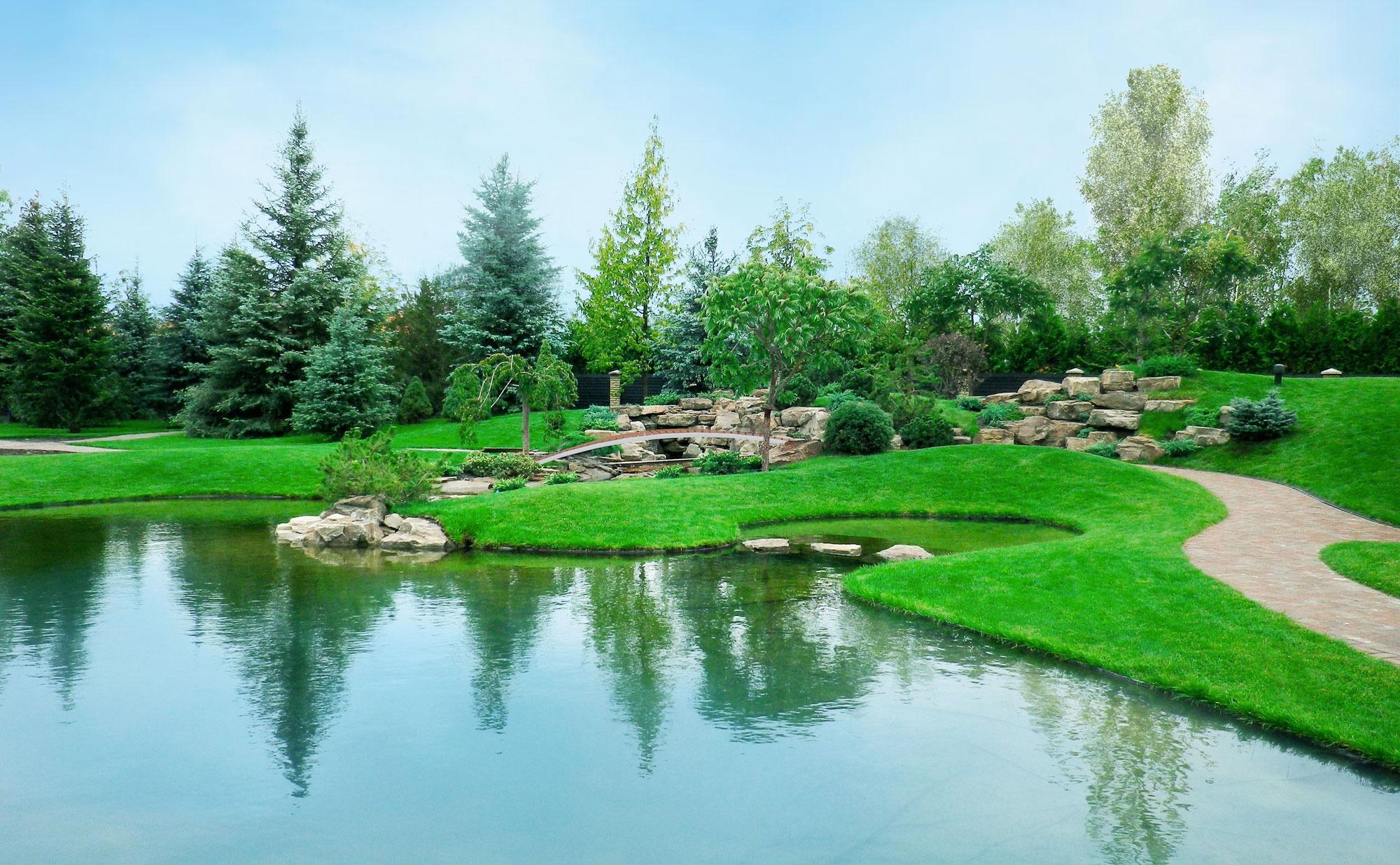 ландшафтный дизайн с озером фото всего