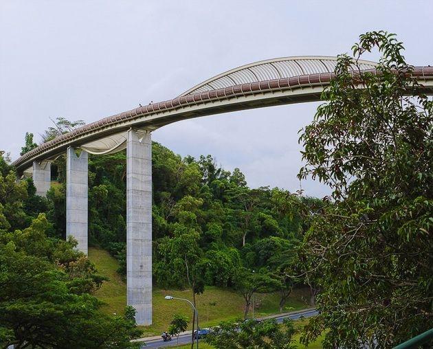 henderson-waves-bridge-001