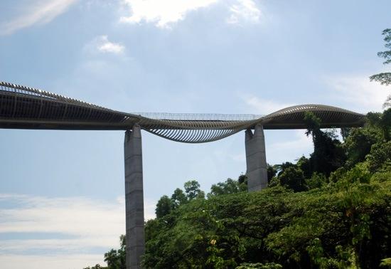 henderson-waves-bridge-003