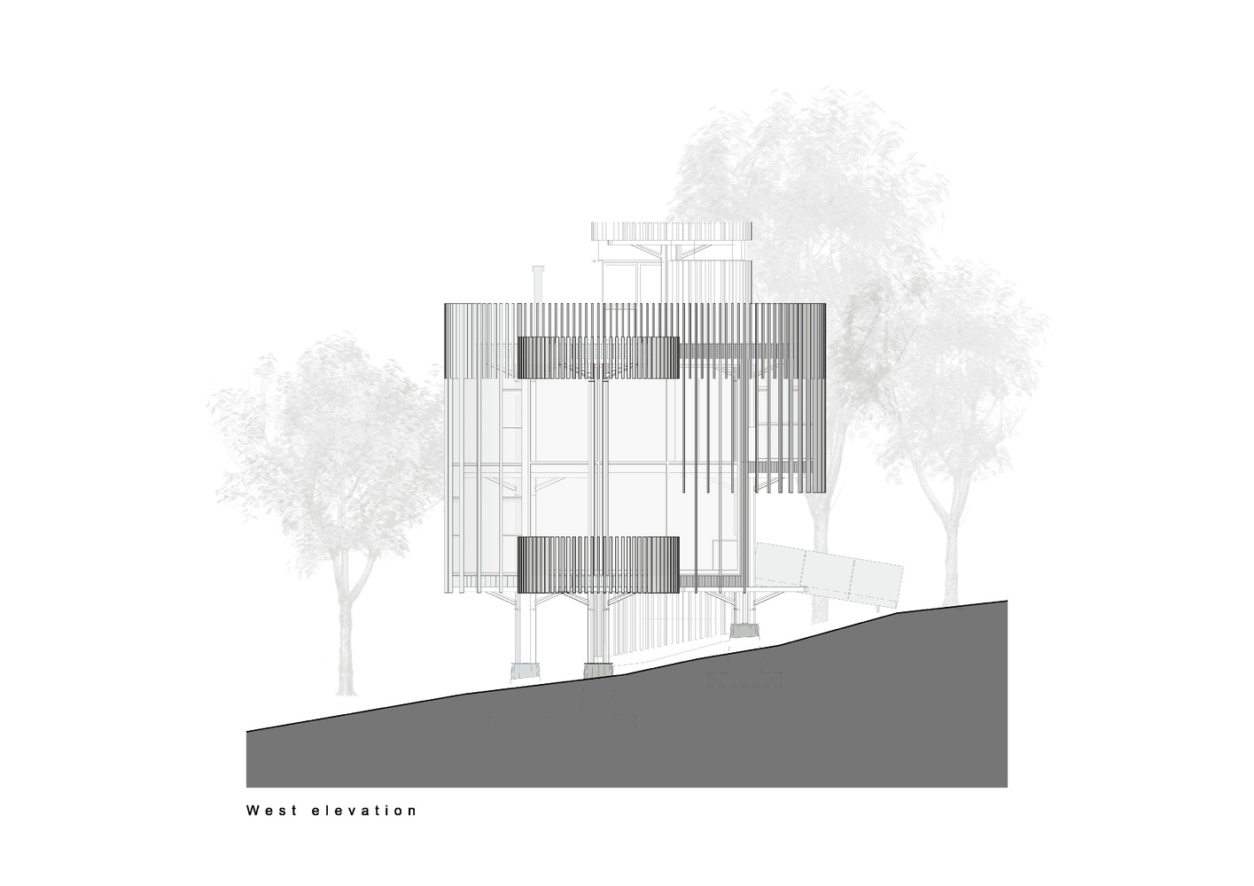 house_paarman_-_tree_house_west_elevation0001