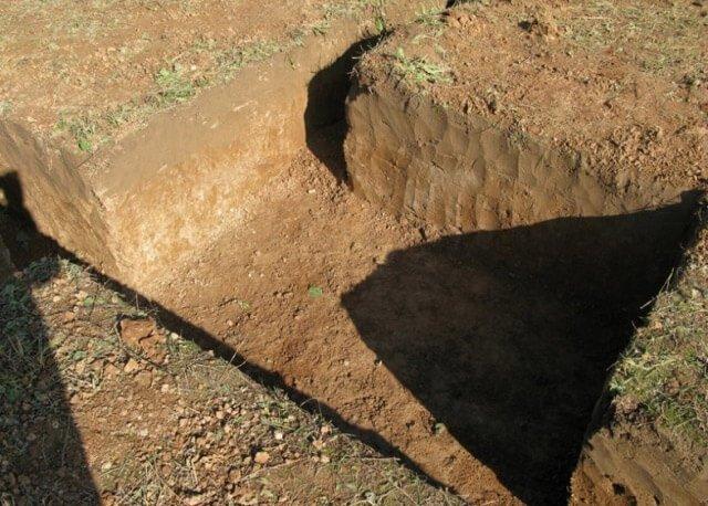 Подготовленная суглинистая почва для посадки роз