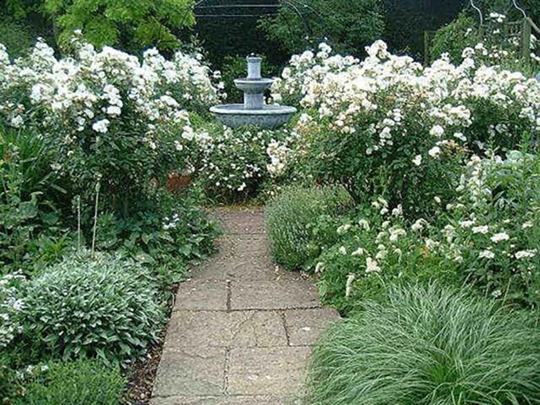 Фото клумбы из белых цветов - 2