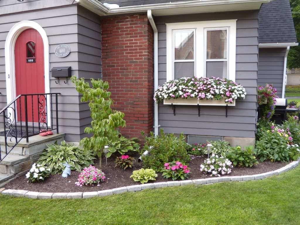 Фото клумбы под домом из молодых цветов
