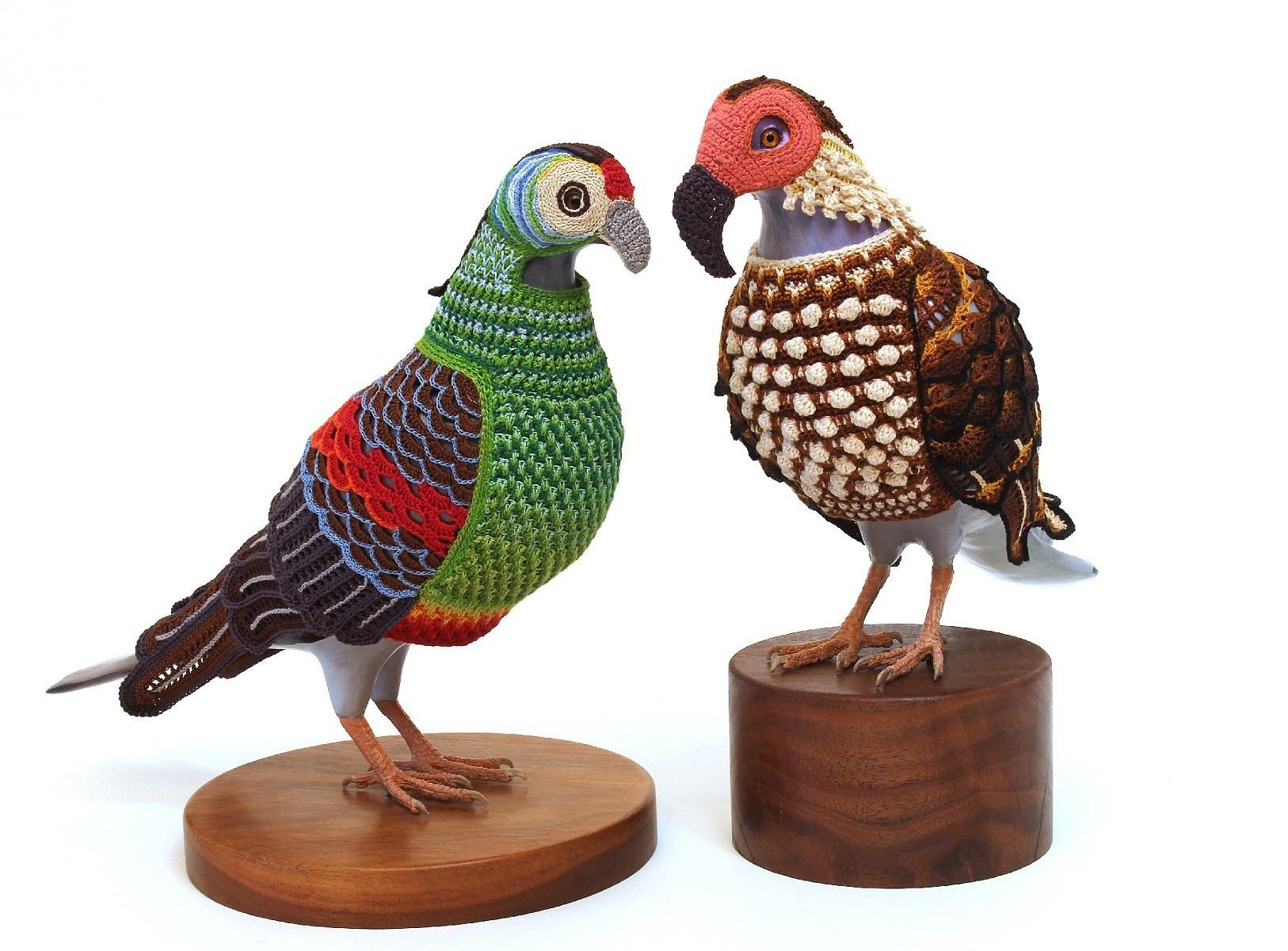 pigeon-6_01