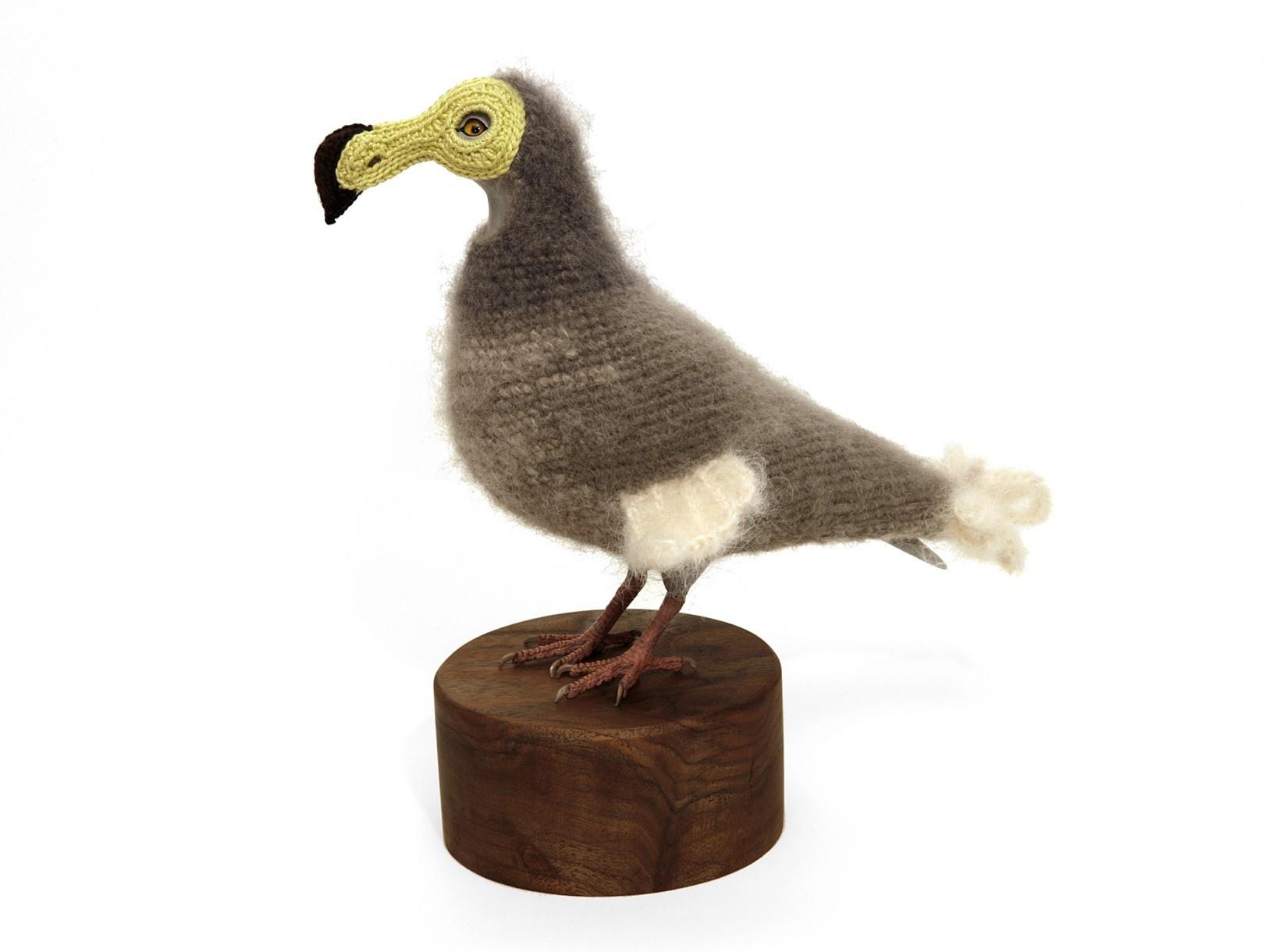 pigeon-2_01