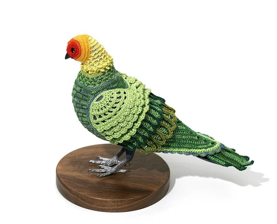 pigeon-4_01