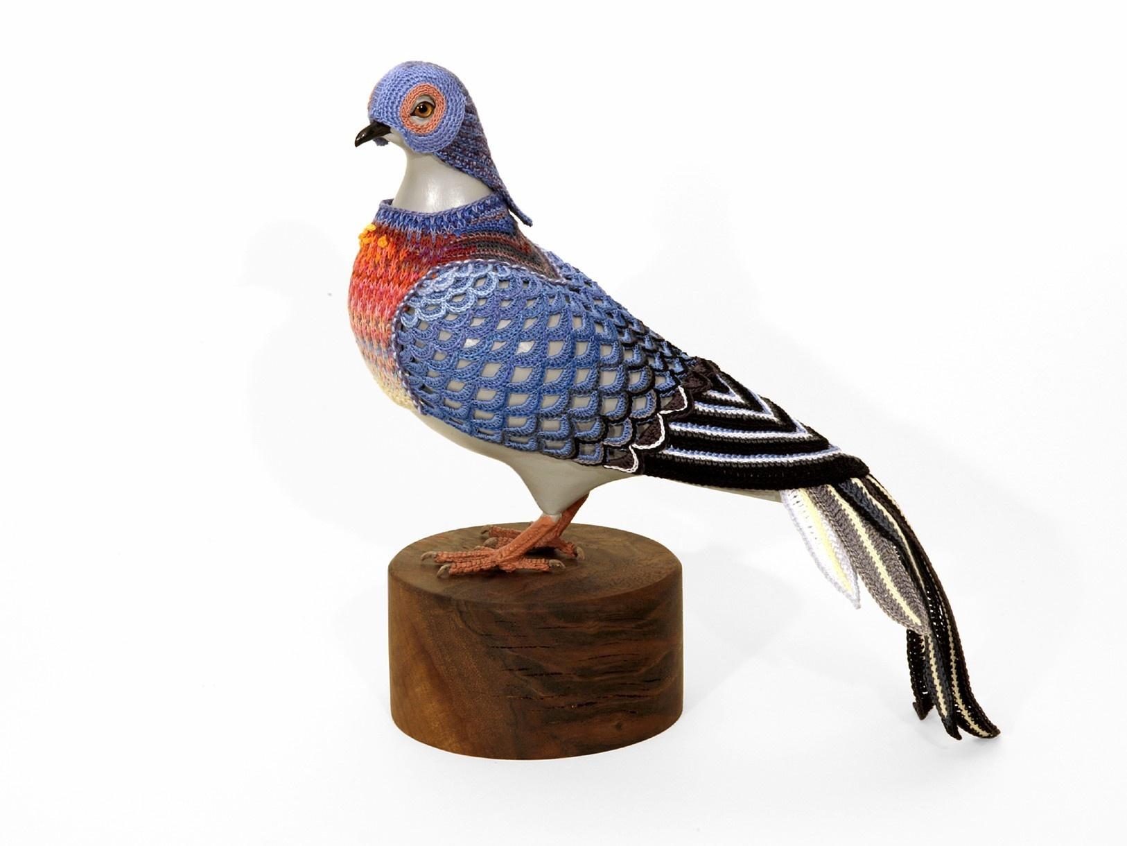 pigeon-3_01