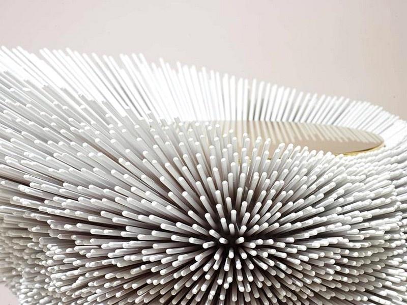 sea-anemones-6_01