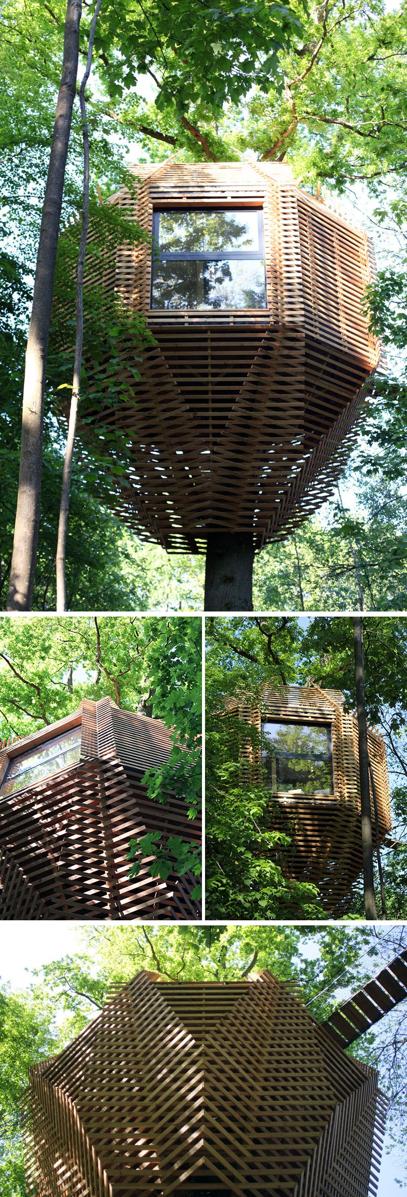 modern-architectural-wood-tree-house-170118-1246-02_1