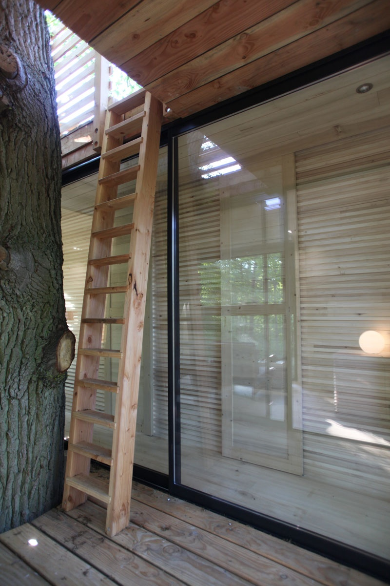 modern-architectural-wood-tree-house-170118-1246-07