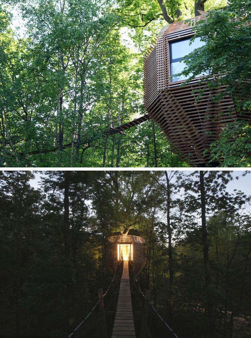 modern-architectural-wood-tree-house-170118-1246-03_01