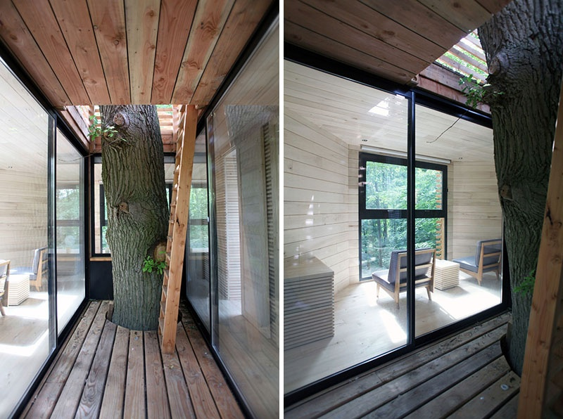 modern-architectural-wood-tree-house-170118-1246-04
