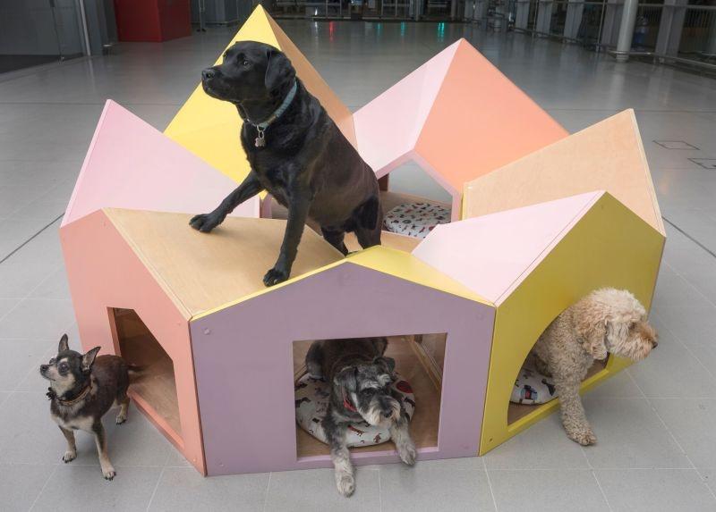 reservoir-dogs