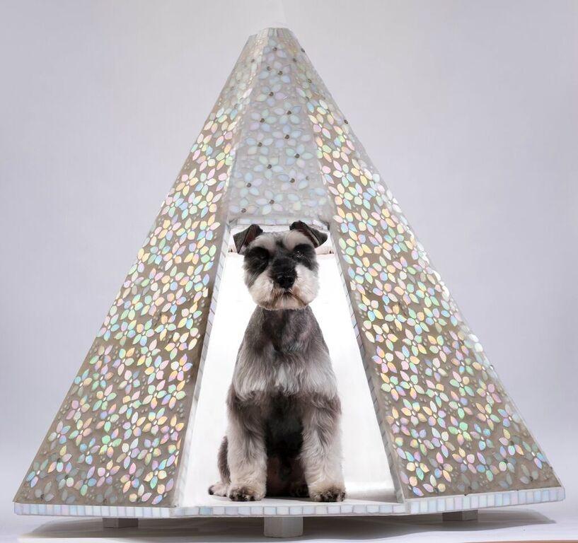 mosaic-dog.