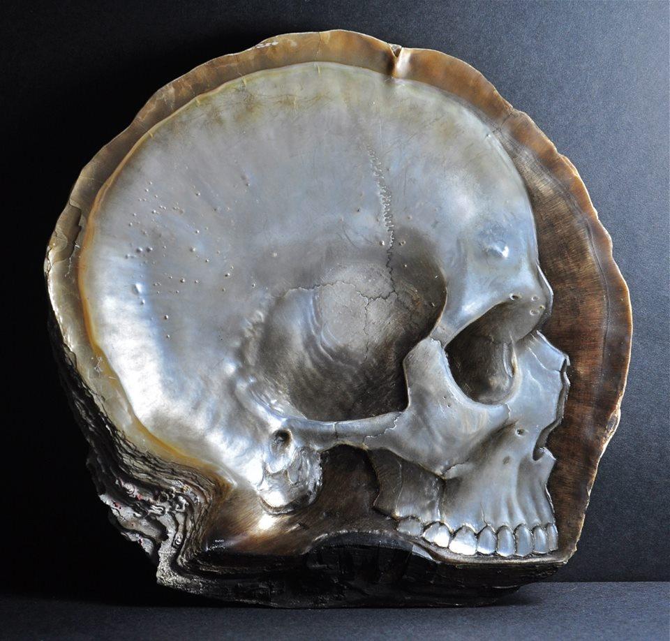 skull-1_04