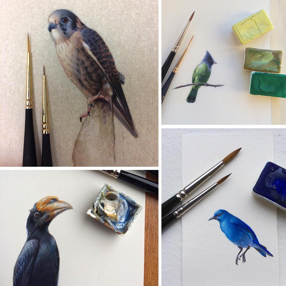 birds-9_01