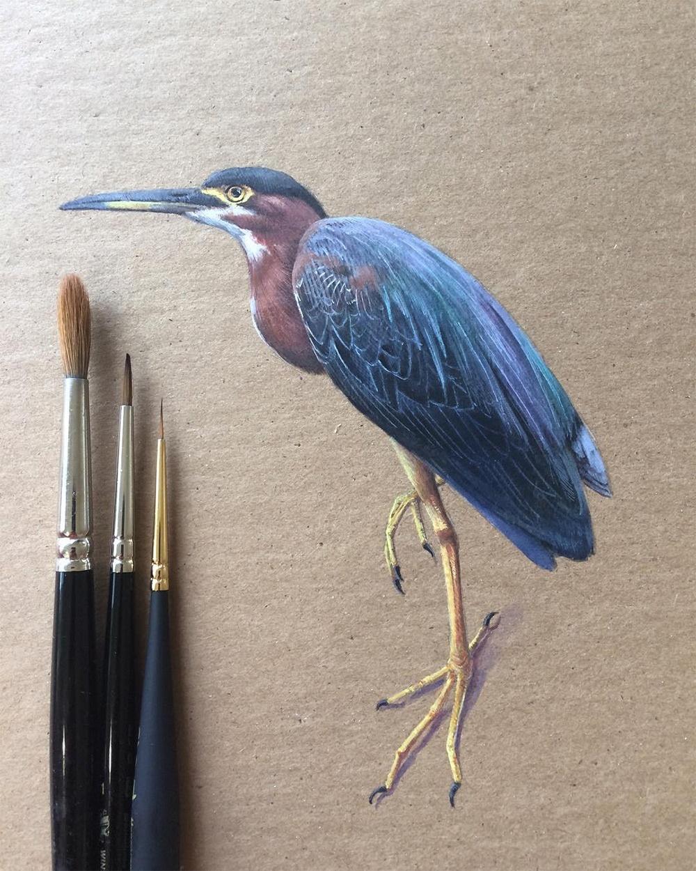 birds-2_02