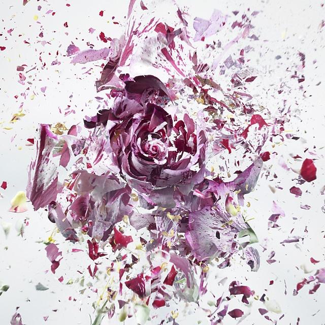 flower-4_07
