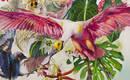 Красочные отношения пространства и вещей Карлы Маркези